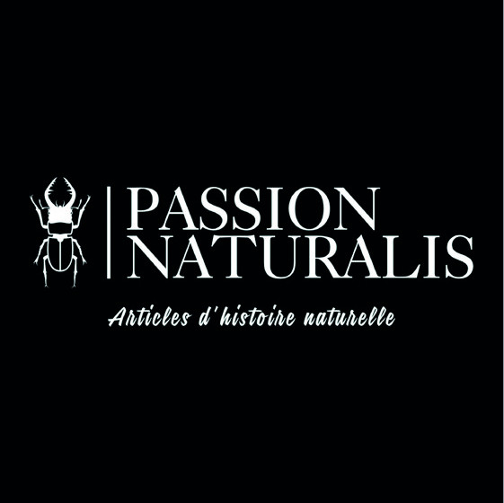 Passion Naturalis - Mickaël Roullier